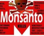 Zakazane słowo Monsanto