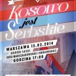 Demonstracja poparcia dla serbskiego Kosowa 2014