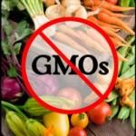 GMO – lobbing i potencjalne zyski wielkich koncernów