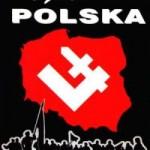 Krzysztof Kubacki: Między USA, Francją i Wielką Brytanią