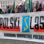 Katowice: Narodowcy przeciwko fałszerstwom wyborczym