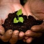 Ziemia, środki produkcji, dystrybucjonizm