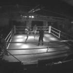 Kampf der Nibelungen 2015 – niemiecki, nacjonalistyczny turniej sportów walki