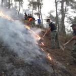 Greccy nacjonaliści walczą z pożarami
