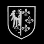 """Gabriele Adinolfi: Mit Europy i Francuzi z Dywizji """"Charlemagne"""""""