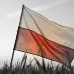 """Marsz Niepodległości 2016 i """"wielki"""" protest """"antyfaszystów"""""""